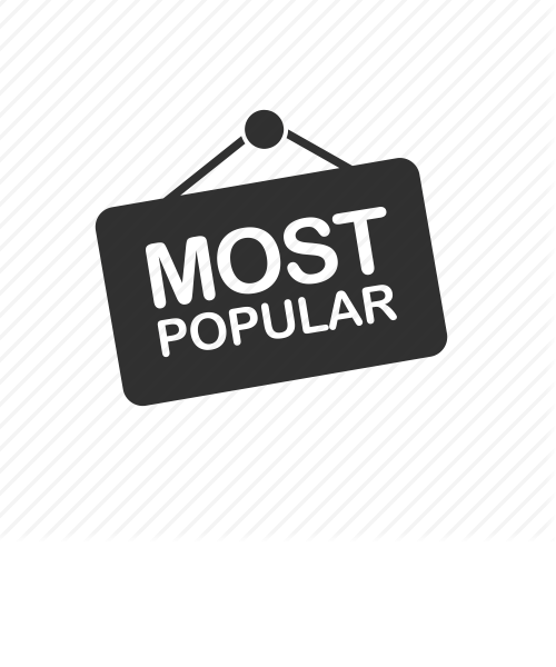 Most Popular category